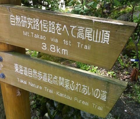 takao-michishirube